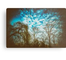 All kind of trees in one picture Metal Print