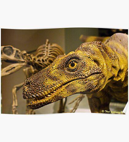 Raptor! Poster