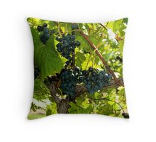 Time for some Red Wine Throw Pillow