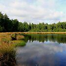 Watermolenveen Drenthe by DutchLumix