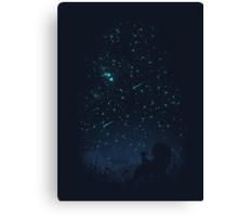 Under The Stars Canvas Print
