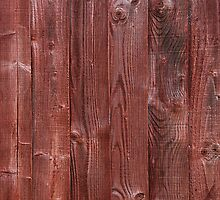 Wood plank by luissantos84