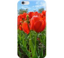 Orange Blossom iPhone Case/Skin