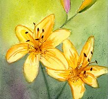 Lilies and Buds Watercolor by AngelaBishop