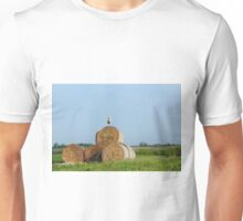 field with white stork and straw bale Unisex T-Shirt