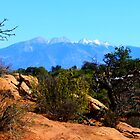 View of the La Sals by Nathan Jekich