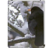 Blackbird in Snow iPad Case/Skin