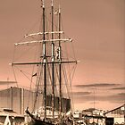 The Oosterschelde in Sepia by Larry Lingard-Davis