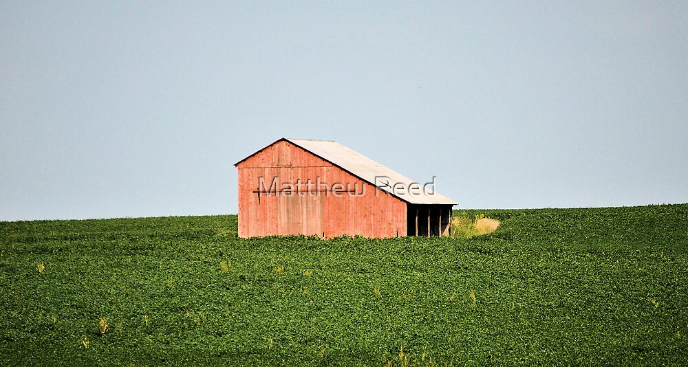 Barn in field by Matthew Reed