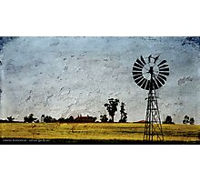 Canola Homestead Photographic Print