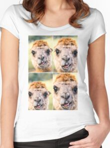 Alpaca by itself in a field  Women's Fitted Scoop T-Shirt