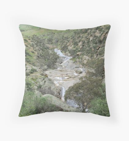 Looking Back! to the curve, Mannum Gorge, S.A. Throw Pillow