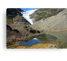 Glaciers and tarns Metal Print