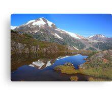 Glaciers and tarns II Metal Print