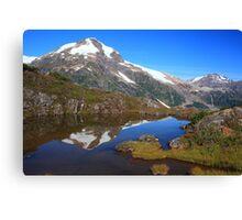 Glaciers and tarns II Canvas Print
