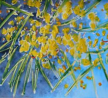 Wattle by Barbara Wogan-Provo