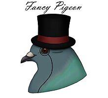Fancy Pigeon Photographic Print