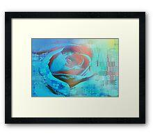 Peach rose highlighted in blue Framed Print