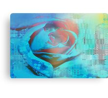 Peach rose highlighted in blue Canvas Print