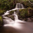 Pistyll Rhaeadr waterfall by alan tunnicliffe