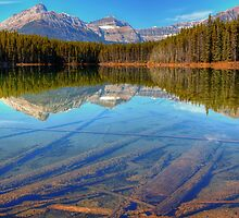 Herbert Lake by JamesA1