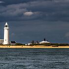 Lighthouse - Solent by Alan Robert Cooke