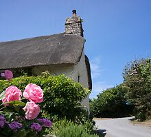 thatched roof by Anne Scantlebury