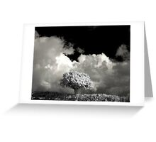 The infrared tree Greeting Card