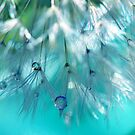 Turquoise Dandy Delight by micklyn