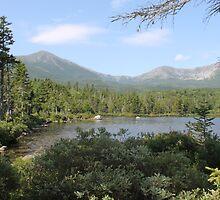 Pond in Maine by Elizabeth Hamilton-Guarino