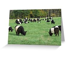 Oreo Greeting Card
