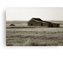 Little House on the Meadow Canvas Print