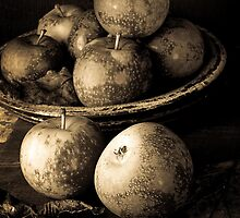 Apple Still Life B/W by Edward Fielding