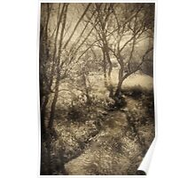 Stream and trees in sepia tone Poster