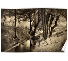 Creek and trees in sepia tone Poster