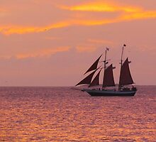 Red Sails in Sunset by gcampbell