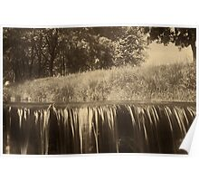 Trees and waterfall in sepia tone Poster