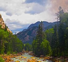Animas River, Colorado by gcampbell