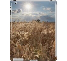 Precious Lands iPad Case/Skin