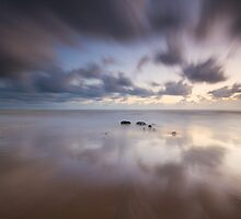 Calm and Simple by willgudgeon