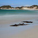 Stumpys Bay by Adam  Davey