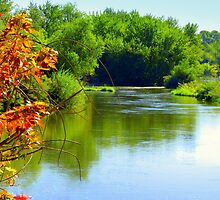 Autumn Is Upon Us..On The Boise River by trueblvr