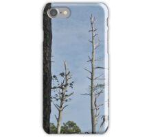 Salt Marsh Tableau iPhone Case/Skin
