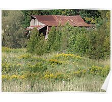 Rusty Roof and Wildflowers Poster