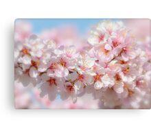Spring Blossoms 1 Canvas Print