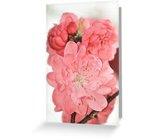 Spring Blossoms 6 Greeting Card