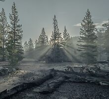 Backcountry Sunrise by Jason  Fitzgibbon