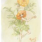 Flower Fairy - Merry Gold by Lily McDonnell