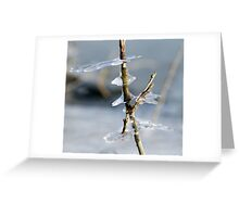 Ice sculptures Greeting Card
