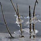 Ice figures by joggi2002